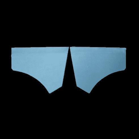 Front Scuttle Panels (Pair) BLUE
