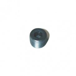 Plug-Oil Filler & Drain-Differential